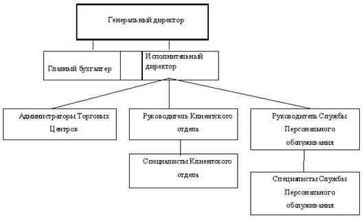 Схема организационной структуры предприятия торговли фото 216