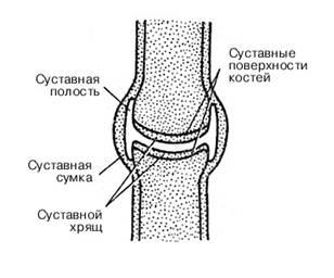 Первая доврачебная помощь при растяжениях связок, вывихах суставов что нельзя при суставном ревматизме