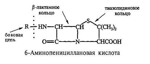 Строение молекулы пенициллина