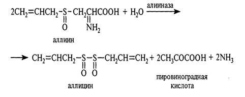 Превращение аллиина в аллицин