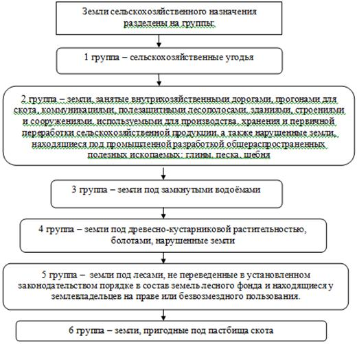 Анализ и оценки акций компании