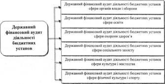 акт проверки внутреннего контроля бюджетного учреждения образец