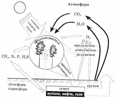 Рис. 1.2. в Схема