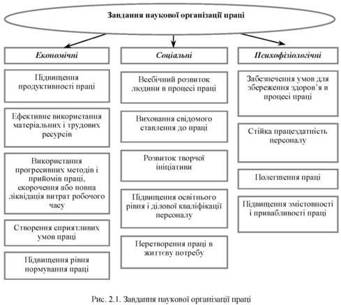 принципы научной организации управленческого труда