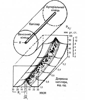 Схема снижения Ро2 в тканях на