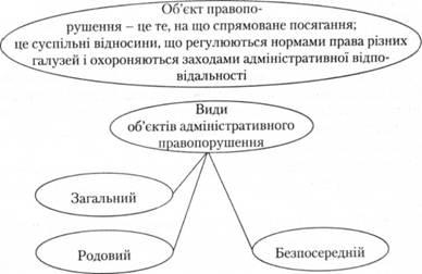 Административные правонарушения и административная ответственность  Виды объектов административного правонарушения