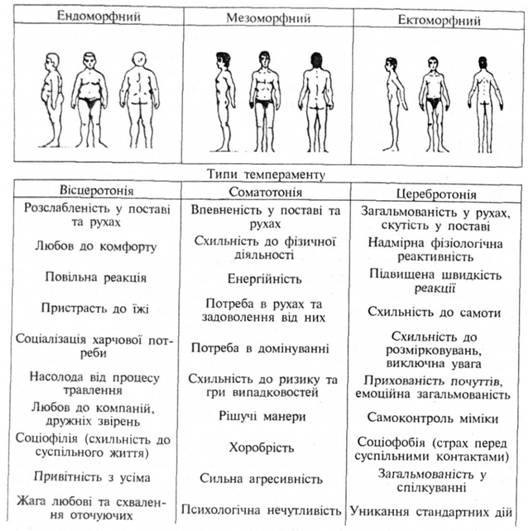 Темперамент психология