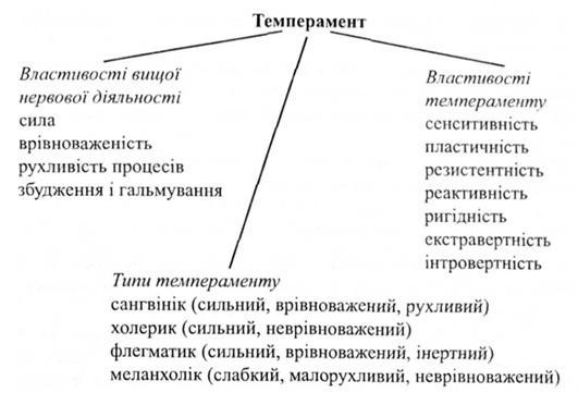 Физиологические основы темперамента Влияние темперамента на  Вопросы для самостоятельной работы
