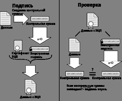 Как сделать эцп для ип 542