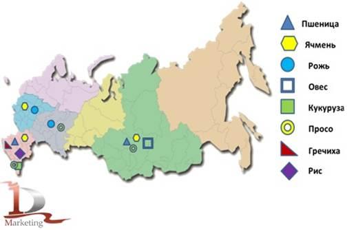 Основные районы выращивания ржи 12