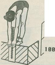 Контрольные упражнения тесты для определения уровня развития  Рисунок 4 2 Наклон туловища из положения стоя